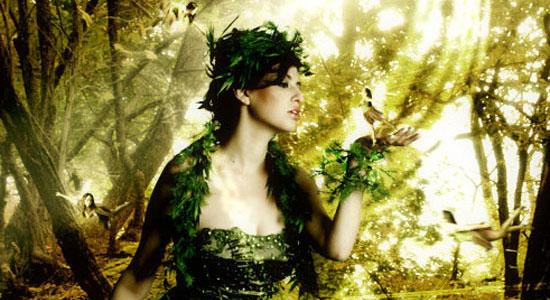 13_forestmagicalscene