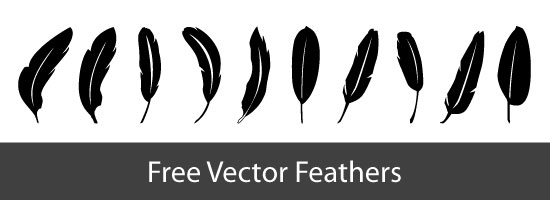 Free Vector Feathers