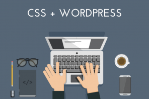CSS Snippets and how to add them to your WordPress Website