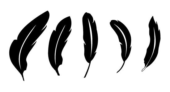 free vector feathers | concept dezain